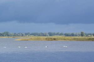 Endgültig vorbei: Der Sommer mit dieser schönen Aussicht vom Anglerhafen auf den Kubitzer Bodden.